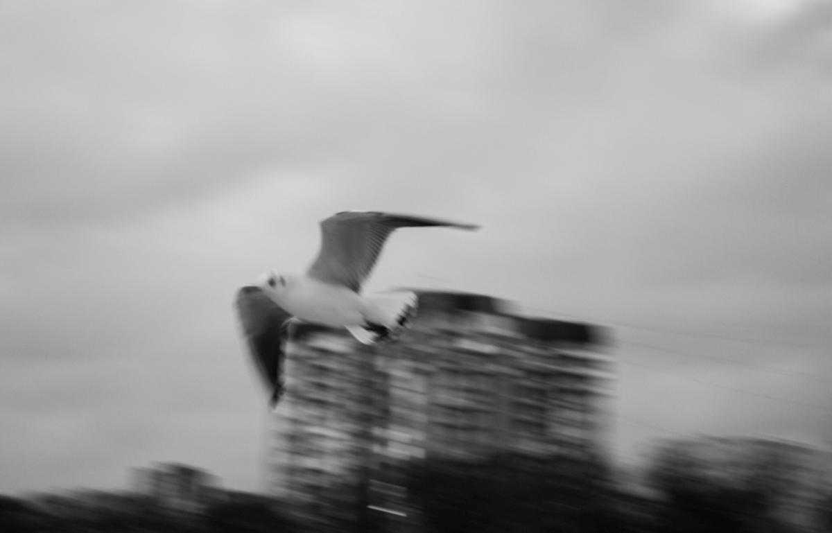 Бесконечный сезон. Юлия Горбунова 35 лет, педагог, занимается фотографией. Родилась в Черняховске