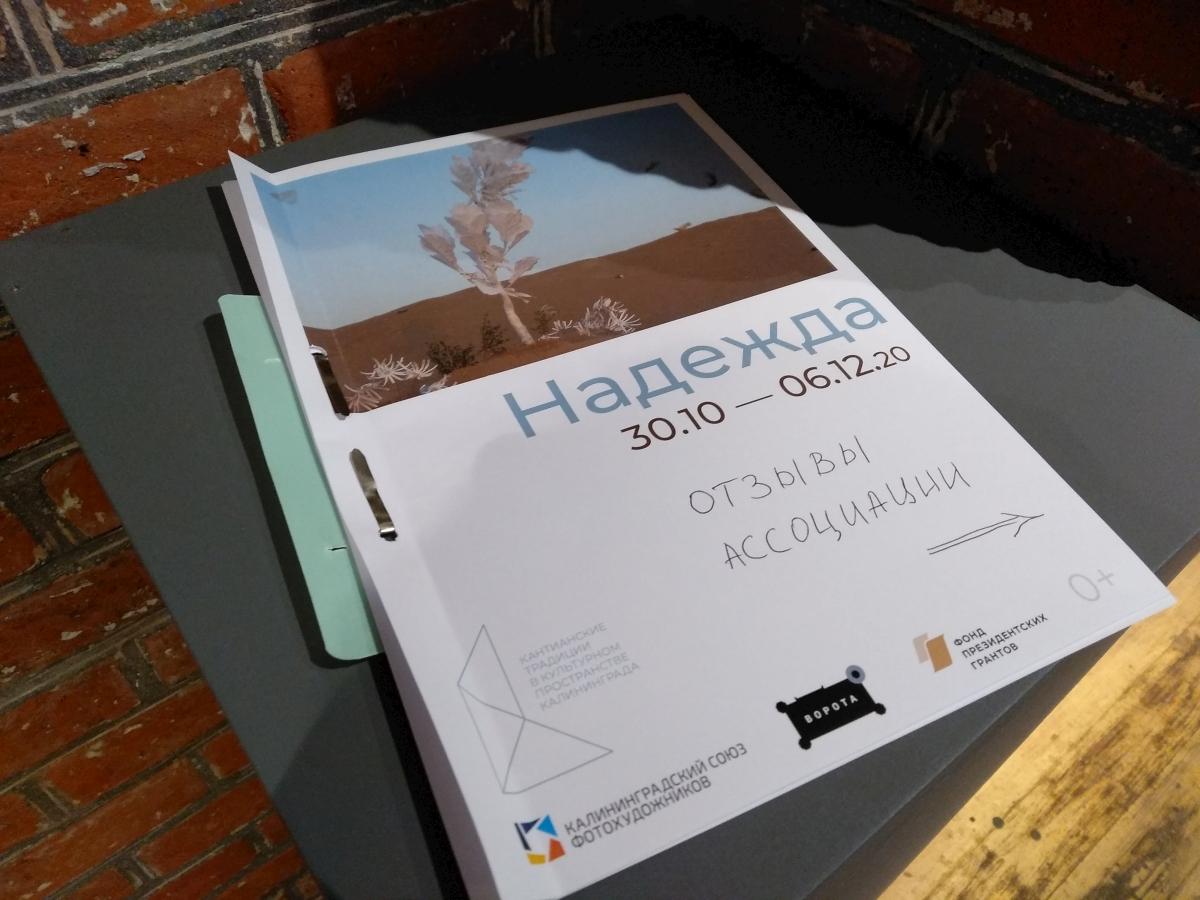"""Экспозиция выставки """"Надежда"""", 2020 г."""