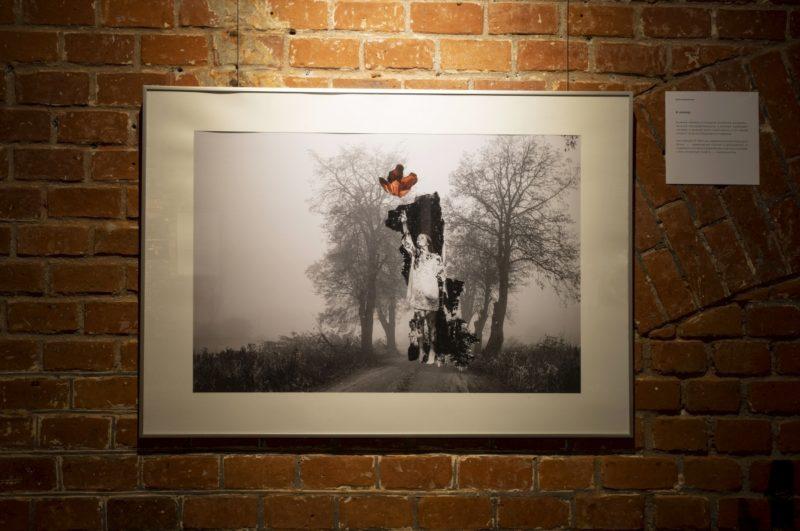 «К солнцу» (фотоколлаж) Елена Зеленская, Калининград